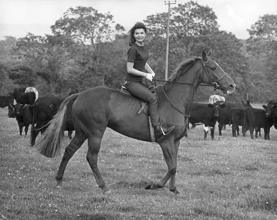 Jackies Horse Photograph by Keystone