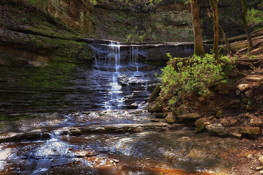 Jackson Falls - Natchez Trace by Susan Rissi Tregoning