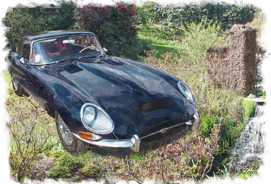 Jaguar E Type by Peter Leech
