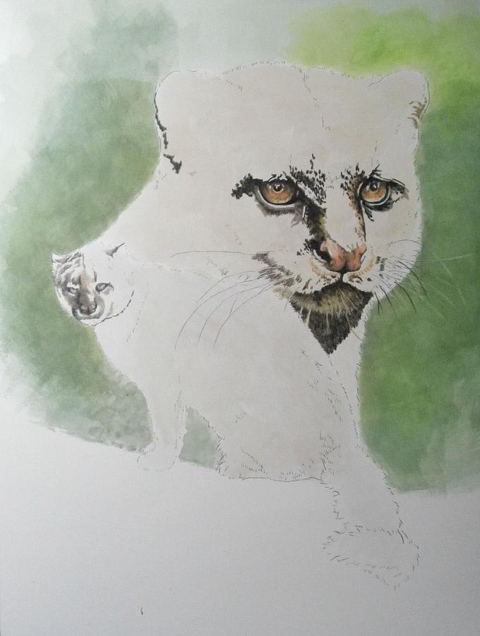 Jaguarundi day 3 by Barbara Keith