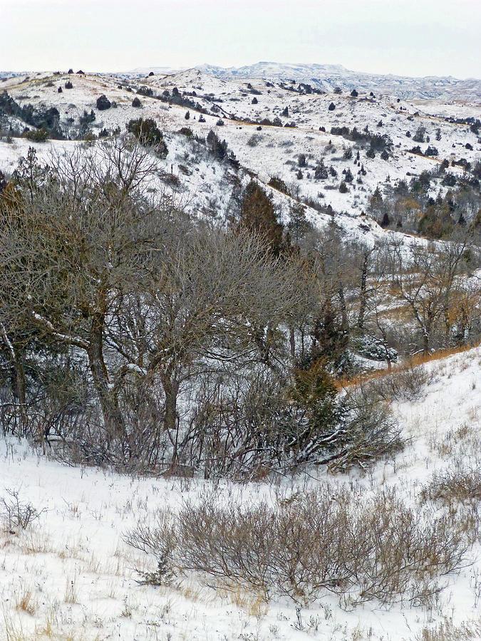 North Dakota Photograph - January Badlands by Cris Fulton