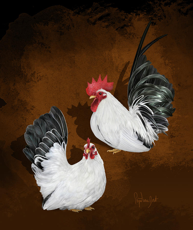 Chickens Digital Art - Japanese Bantams Black Tailed White by Sigrid Van Dort