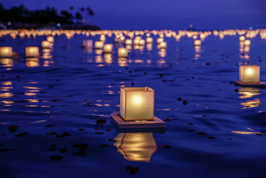 Japanese Floating Lanterns Photograph by Julie Thurston