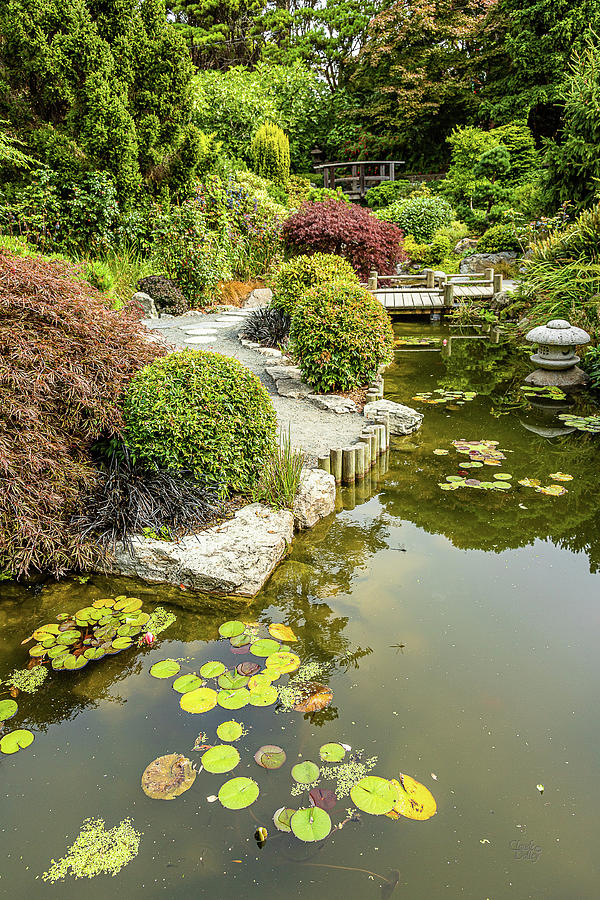 Japanese Garden-1 by Claude Dalley