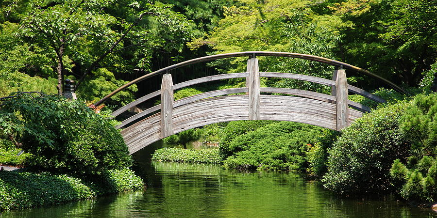 Japanese Garden Arch Bridge in Springtime by Debi Dalio