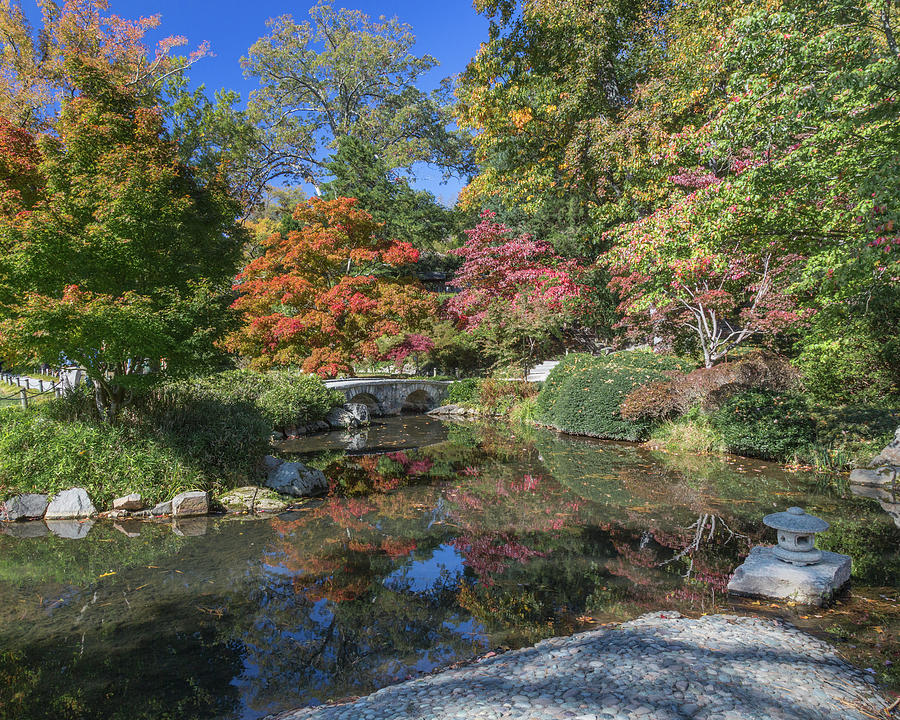 Japanese Garden Bridge Maymont by Jemmy Archer
