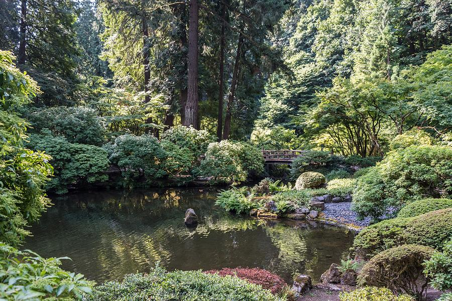 Japanese Garden Portland by Michelle McConnell