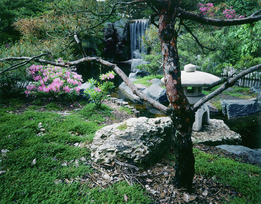 Japanese Garden, U Of Mn Landscape Photograph by Lawrencesawyer
