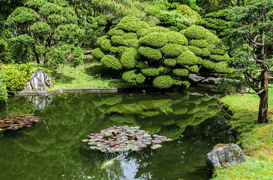 Japanese Tea Garden View by Douglas Wielfaert