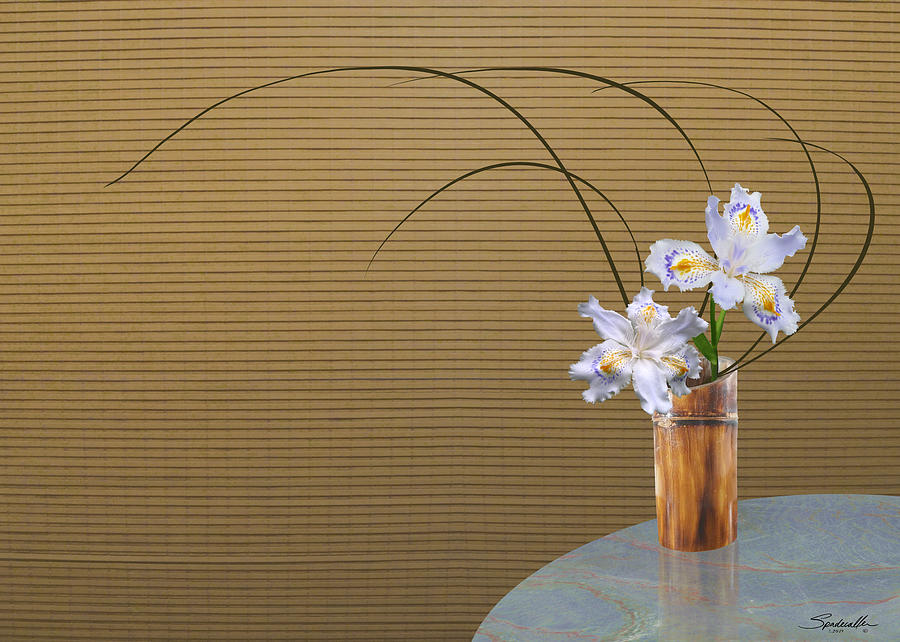 Japonica Iris in Bamboo Vase by Spadecaller