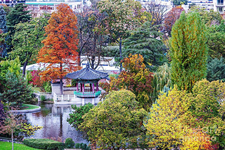 Jardin D Acclimatation Paris Photograph By Lumiere De Liesse Ltd