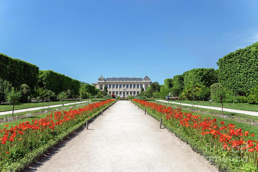 Jardin des Plantes in Paris by Ulysse Pixel