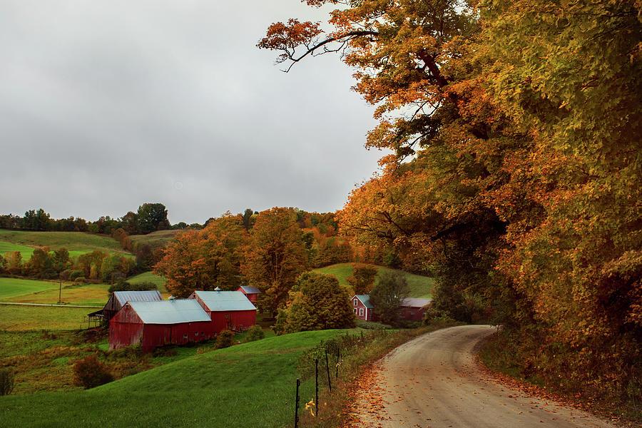 Jenne Farm I by Norma Warden
