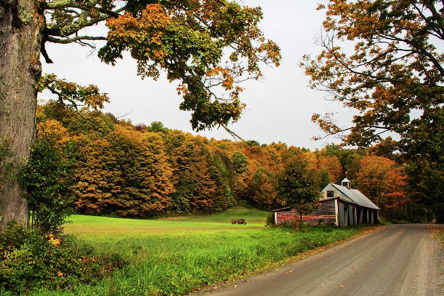 Jenne Farm II by Norma Warden