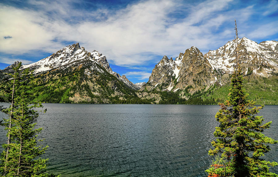 Jenny Lake Grand Teton National Park Vista by Dan Sproul