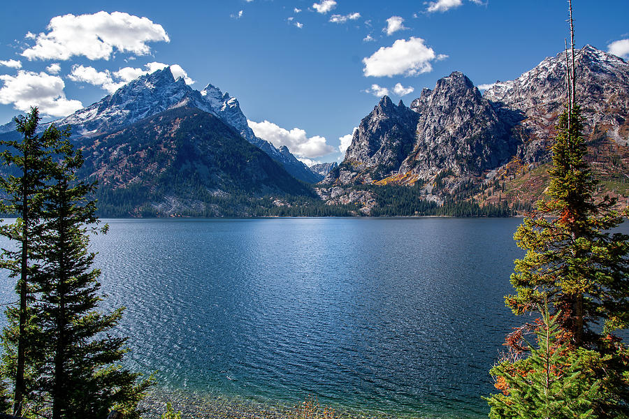 Jenny Lake by Scott Read