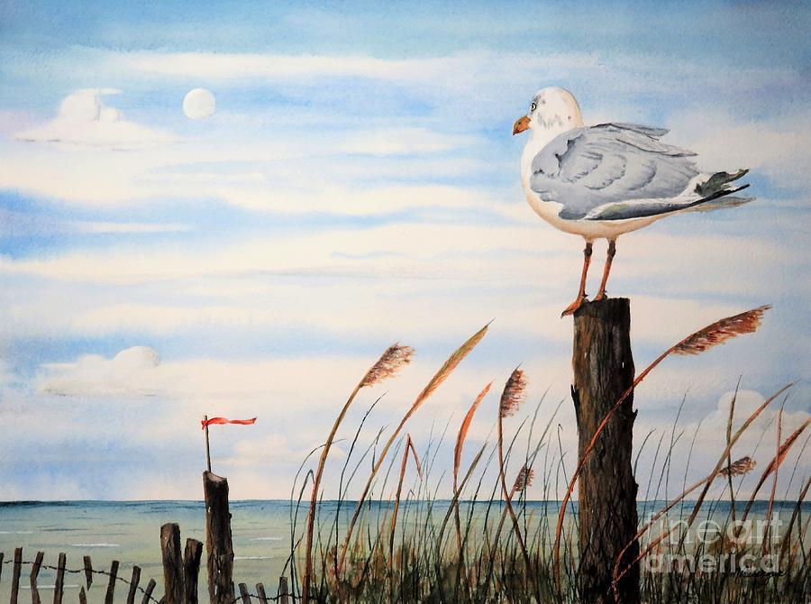 Jersey Gull by Joseph Burger