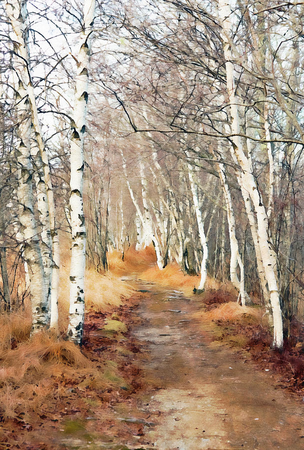 Jessup Path in Winter - Oil by Gordon Ripley