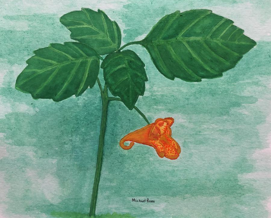 Jewel Weed Wildflower Painting