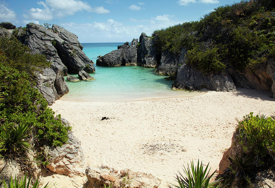 Jobsons Cove Beach, Bermuda Photograph by Elisabeth Pollaert Smith
