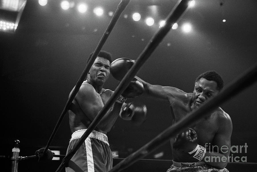 Joe Frazier Punches Muhammad Ali Photograph by Bettmann