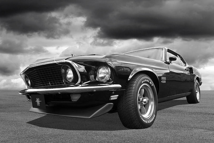 John Wicks Mustang Boss 429 by Gill Billington
