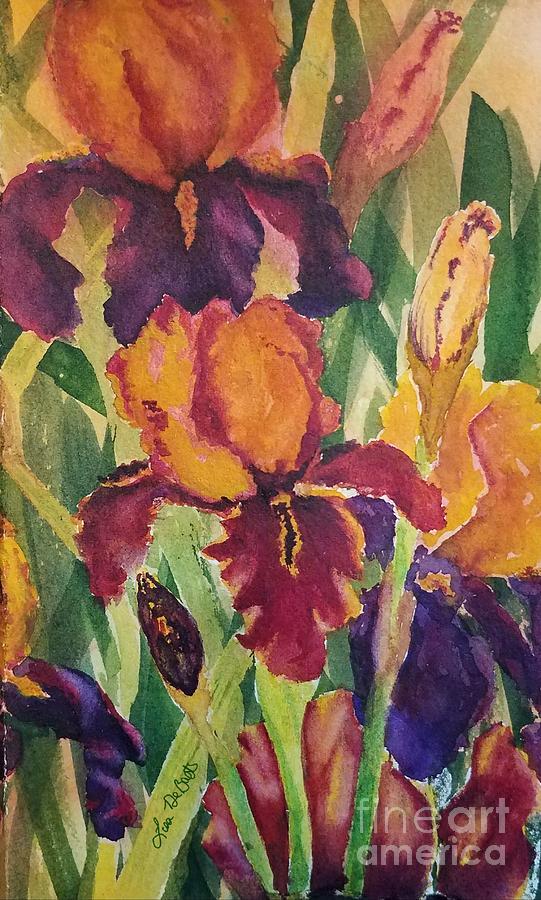 Jordyn's Iris by LISA DEBAETS