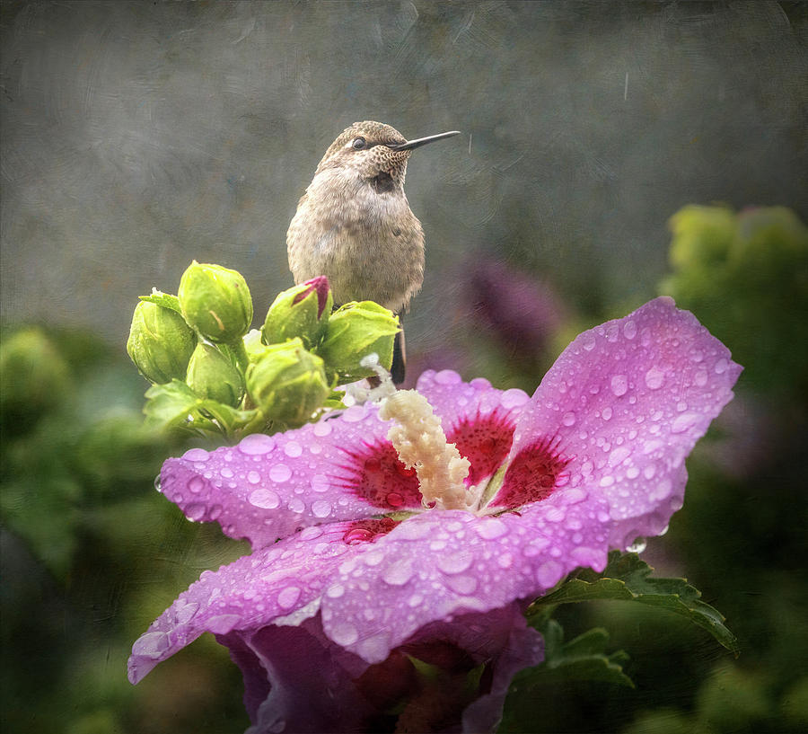 Joy in the Rain by Angie Vogel