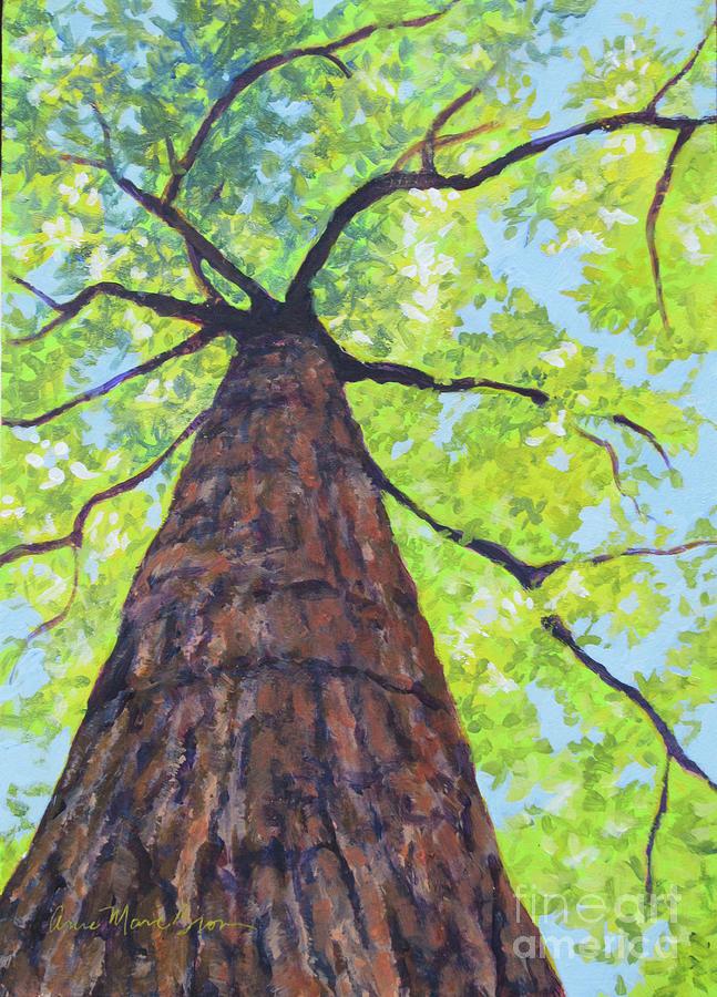 Joyce Kilmer Tree by Anne Marie Brown