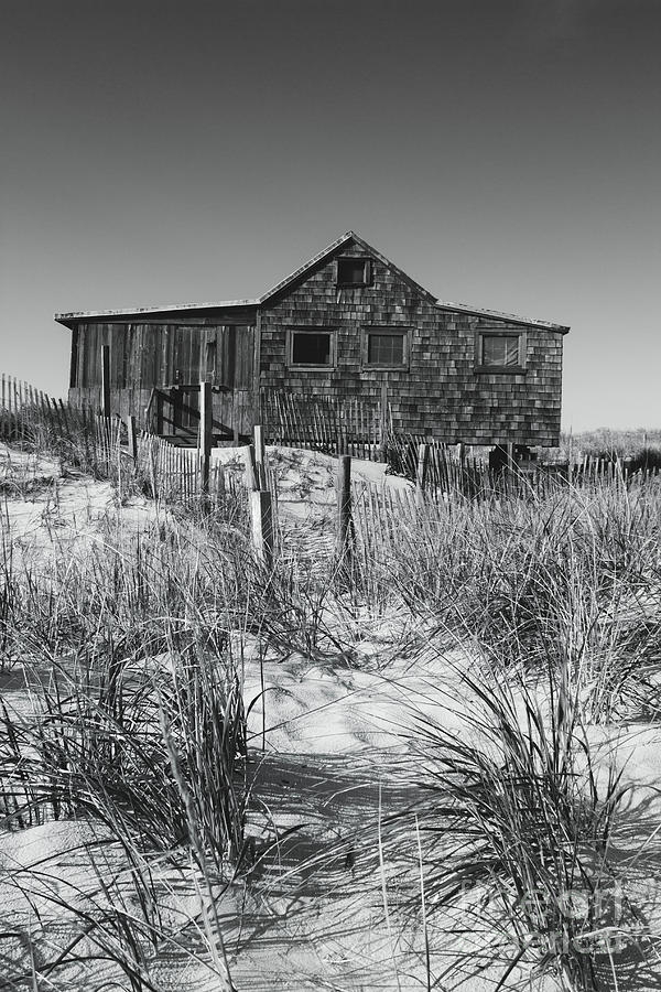 Judges Shack in Black and White by Colleen Kammerer