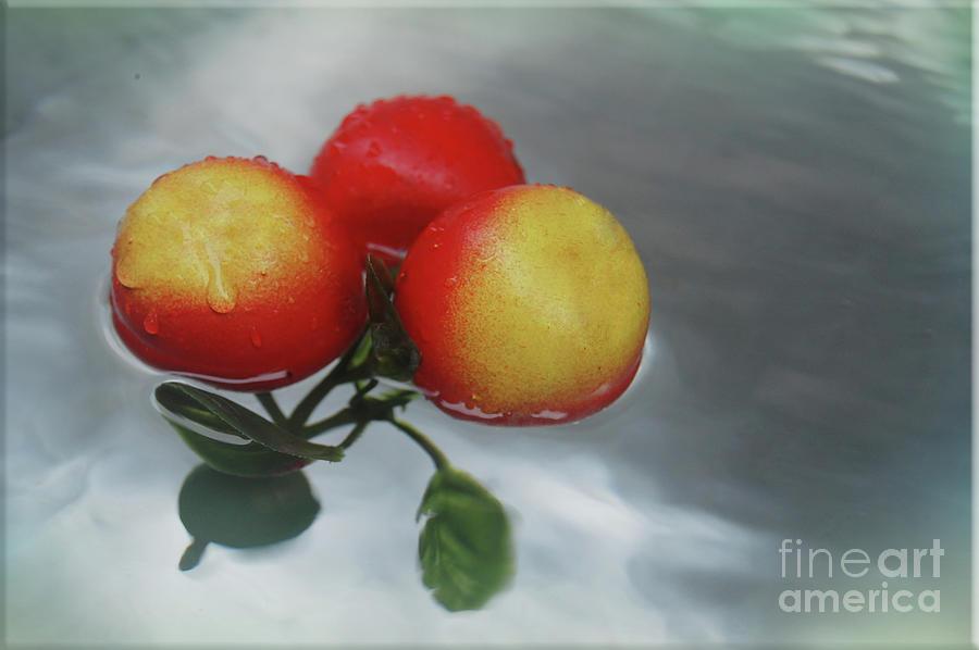Juicy Fruity Photograph by Emughkwuigno Princewill