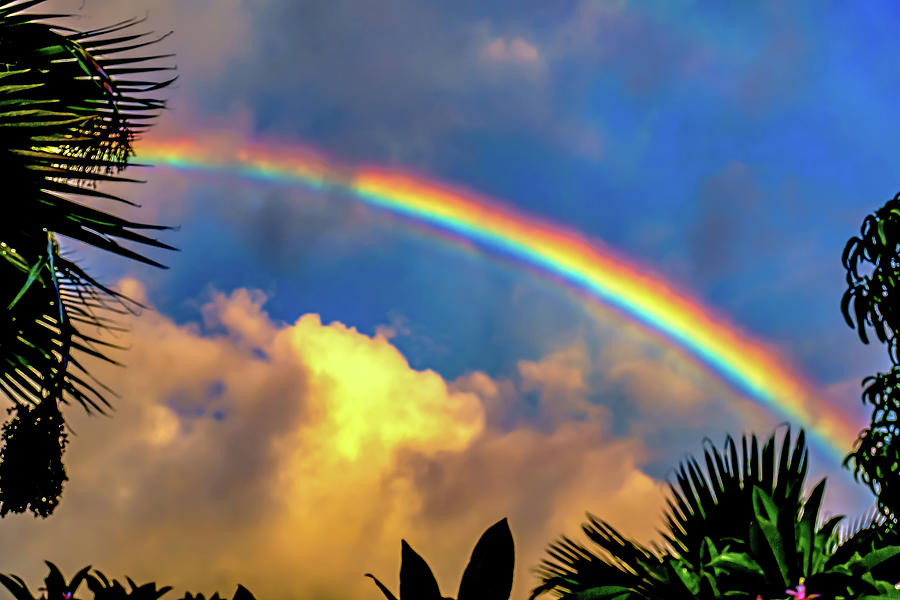 July 10th, 2019 Rainbow by John Bauer