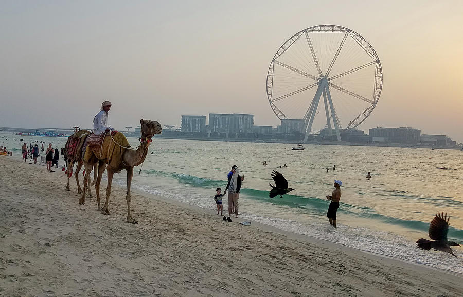 Jumeirah Beach, Dubai Marina, Dubai, United Arab Emirates by Jamie Baldwin