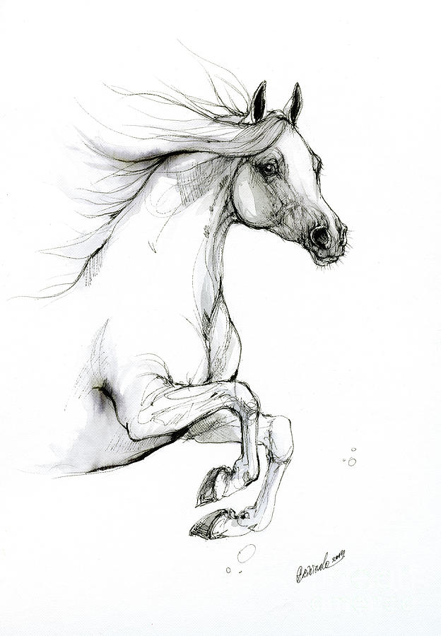 Jumping horse 2019 09 04 by Angel Ciesniarska