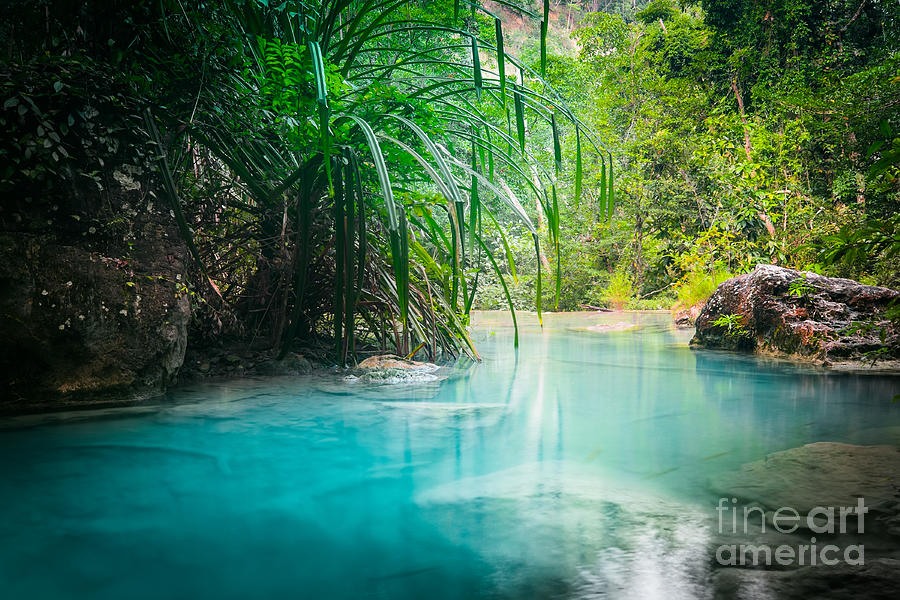 Magic Photograph - Jungle Landscape With Flowing Turquoise by Perfect Lazybones