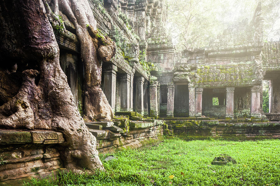 Cambodia Photograph - Jungle Temple 1 by Nicole Young