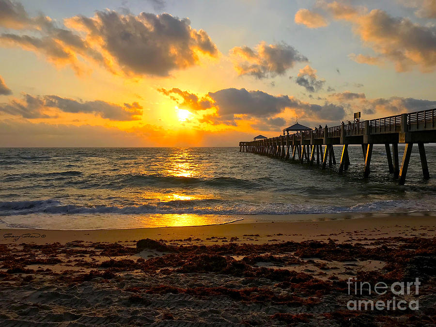 Juno Beach Sunrise by Carey Chen