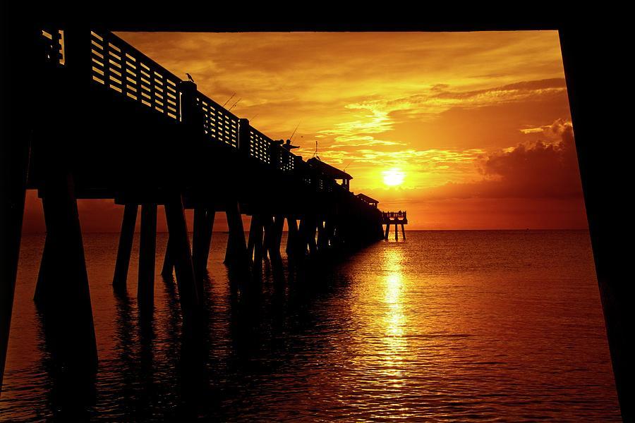 Juno Pier 3 by Steve DaPonte