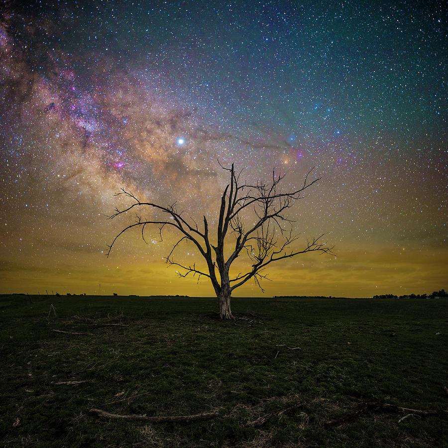 Milky Way Photograph - Jupiter In The Way  by Aaron J Groen