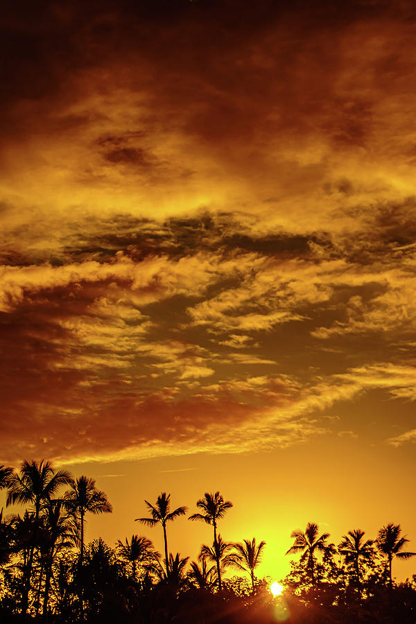 Just a Golden Sunset by John Bauer
