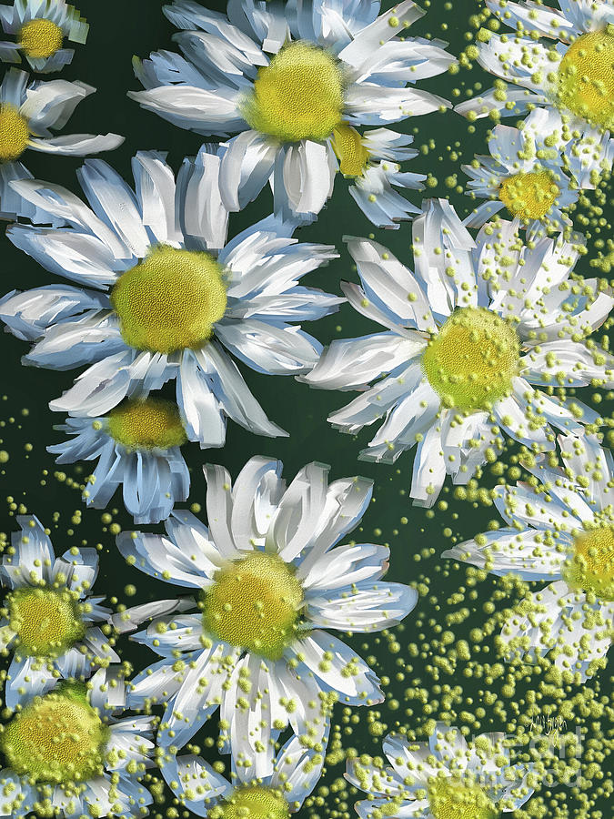 Just Crazy For Daisies by Lois Bryan