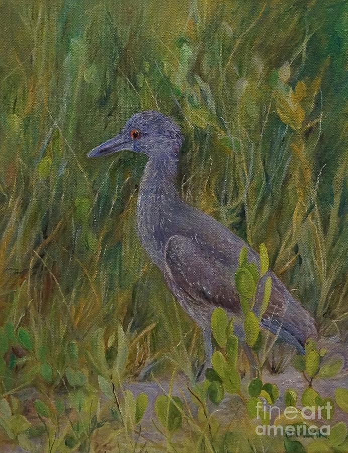 Juvenile Heron at Robinson Preserve by Barbara Moak