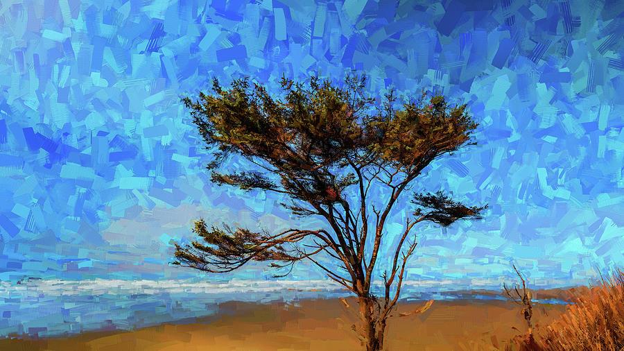 Kalaloch Tree 25 by Mike Penney
