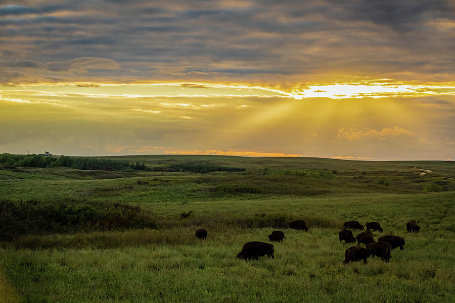 Kansas Flint Hills Sunset by Jay Stockhaus