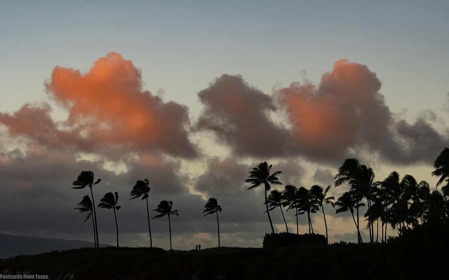 Kapalua Shores  by Gaylon Yancy
