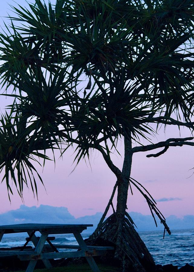 Kapoho Hala tree at Dawn by Lehua Pekelo-Stearns