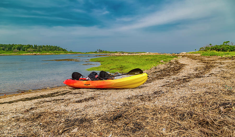 Goat Photograph - Kayaking Adventure In Maine by Betsy Knapp