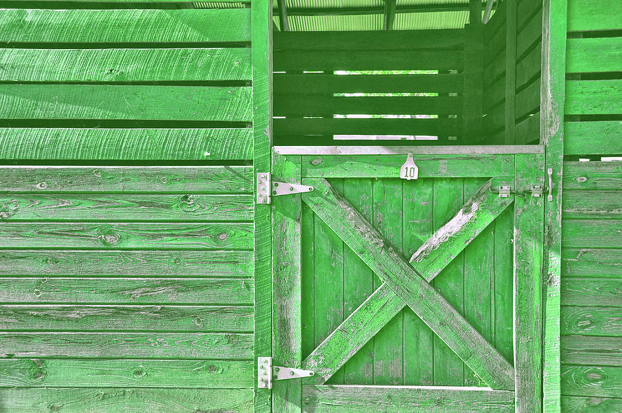 Stable Photograph - Kelly Stable by JAMART Photography