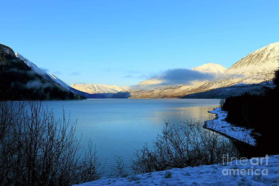 Kenai Lake Photograph - Kenai Lake Primrose Kenai Peninsula Alaska by Louise Heusinkveld