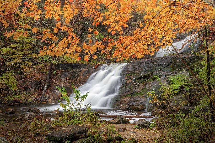 Kent Falls Foliage 3 by Bill Wakeley